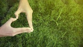 Dia do ambiente M?o da mulher na forma do cora??o no fundo da grama verde imagens de stock