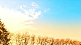 Dia do céu azul na manhã Fotografia de Stock