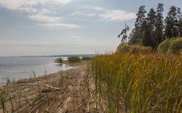Dia do outono no lago Foto de Stock