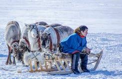 Dia do pastor da rena na península de Yamal fotos de stock royalty free