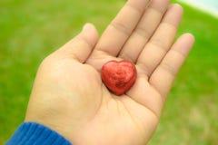 Dia do ` s de Art Valentine da foto Imagens de Stock Royalty Free