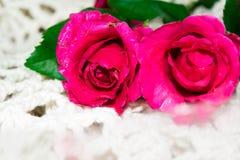 Dia do `s do Valentim Fotos de Stock Royalty Free