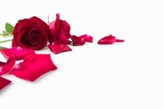 Dia do `s do Valentim Imagens de Stock