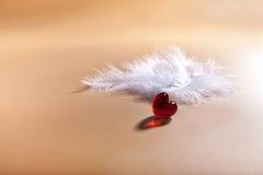 Dia do Valentim Coração vermelho Penas brancas do ar Imagem de Stock Royalty Free