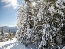 Dia ensolarado bonito em inclinações da montanha do sapato de neve nos cass ocidentais Fotografia de Stock Royalty Free