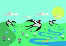 Dia ensolarado da mola com flores e andorinhas ilustração do vetor