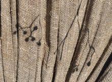 Dia ensolarado de matéria têxtil da textura da tela natural de serapilheira imagem de stock