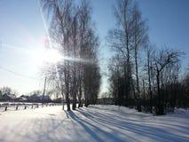 Dia ensolarado do inverno Foto de Stock Royalty Free