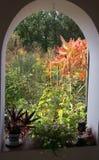 Dia ensolarado do outono em uma vila fotos de stock royalty free
