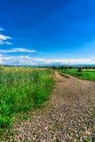 Dia ensolarado e nuvens Fotografia de Stock