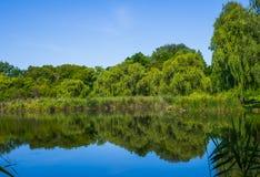 Dia ensolarado em um rio calmo no verão Imagem de Stock