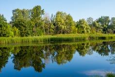 Dia ensolarado em um rio calmo no verão Imagens de Stock Royalty Free