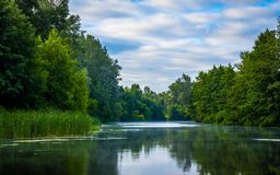 Dia ensolarado em um rio calmo no verão Imagem de Stock Royalty Free
