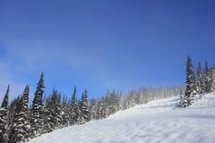 Dia ensolarado em um winterwonderland no assobiador bonito em Canadá, Columbia Britânica fotos de stock