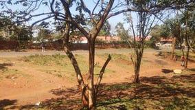 dia ensolarado na estrada de Nairobi Imagens de Stock