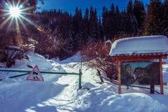 Dia ensolarado na montanha no inverno em Cazaquistão perto da cidade de Almaty Fotos de Stock Royalty Free
