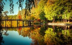 Dia ensolarado no parque exterior com as árvores coloridas do outono Imagens de Stock Royalty Free