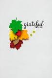 Dia feliz da acção de graças Imagens de Stock Royalty Free