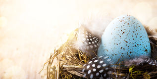 Dia feliz da Páscoa da arte; Pena do ovo da páscoa e de pássaro Imagens de Stock Royalty Free