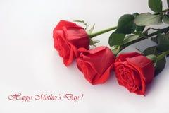 Dia feliz do `s da matriz Close up das rosas vermelhas isolado em um fundo branco Fotos de Stock