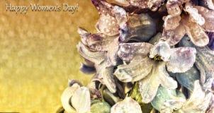 Dia feliz do ` s das mulheres, cartão, fim acima, bonito, inflorescência, hy fotos de stock royalty free