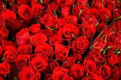 Dia feliz dos Valentim Imagem de Stock Royalty Free