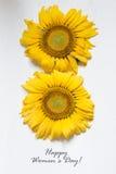 Dia feliz internacional do ` s das mulheres - 8 de março cartão do feriado Fotos de Stock Royalty Free