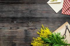 Dia internacional das mulheres do conceito com fundo de madeira t das flores Fotografia de Stock
