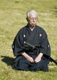Dia japonês da cultura Fotos de Stock Royalty Free