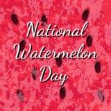 Dia nacional da melancia 3 August Texture da melancia com semente o Foto de Stock Royalty Free