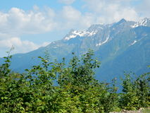 Dia nas montanhas caucasianos Fotos de Stock Royalty Free