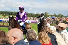 Dia nas raças Imagem de Stock Royalty Free