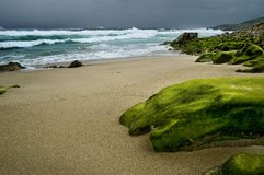 Dia nebuloso na praia Fotografia de Stock Royalty Free