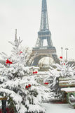 Dia nevado raro em Paris fotografia de stock royalty free