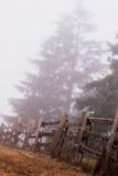 Dia nevoento Fotografia de Stock
