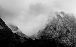 Dia nevoento nas montanhas fotos de stock