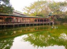 Dia nevoento no parque chinês fotos de stock