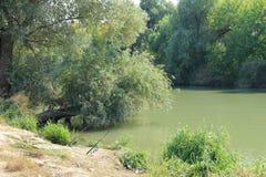 Dia quieto para a pesca do rio com giro Fotos de Stock