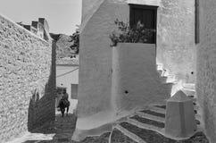 Dia típico em povos da ilha do Hydra com asnos Fotografia de Stock Royalty Free