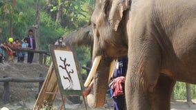 Dia tailandês nacional do elefante video estoque