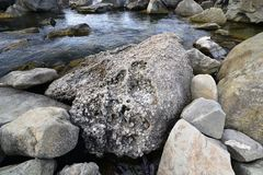 Diabase stone on the beach Royalty Free Stock Photography