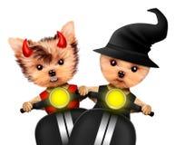 Diablo y bruja divertidos Halloween y día muerto Fotografía de archivo libre de regalías