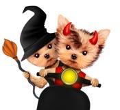 Diablo y bruja divertidos Halloween y día muerto Fotos de archivo libres de regalías