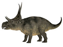 Diabloceratops over White Stock Photo