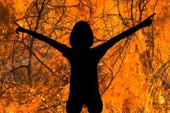 Diabo no fogo foto de stock