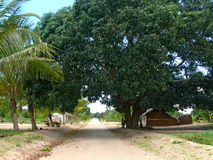 DIACA, MOZAMBIGUE - 4 DESEMBER 2008: the Village. A residential Stock Photography