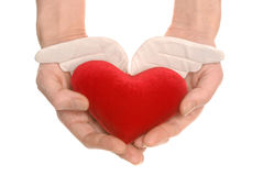 Diagli il mio cuore [percorso di residuo della potatura meccanica] Fotografie Stock Libere da Diritti