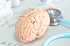 Diagnosis of human brain Royalty Free Stock Image