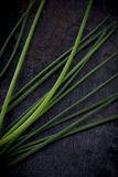 Diagonal Chives. Green diagonal Chives on a steel plate Royalty Free Stock Images