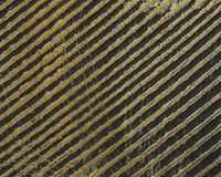 Diagonal distressed lines in wood Stock Photography